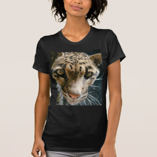Clouded Leopard T Shirts