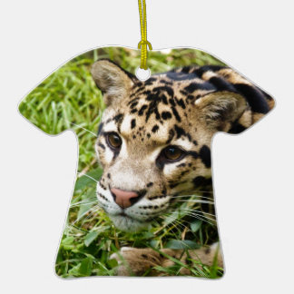 clouded leopard waiting for mom and love christmas tree ornaments