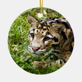 clouded leopard waiting for mom and love round ceramic decoration