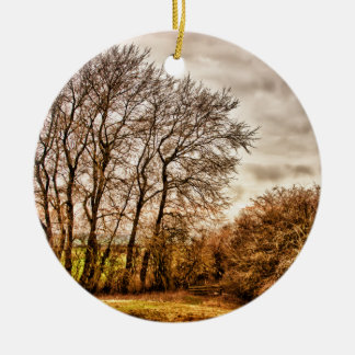 Clouds in Autumn HDR landscape Christmas Ornament