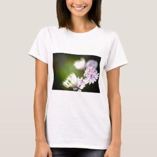 Clover vignette T-Shirt