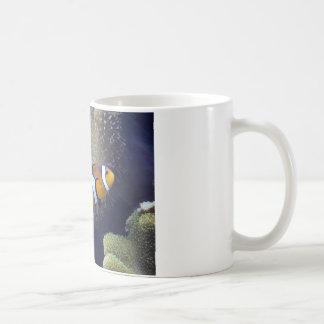 clown fish, 2 basic white mug