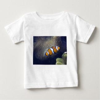 clown fish, 2 tee shirt