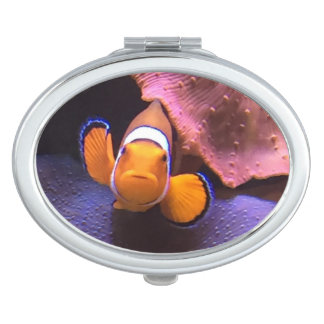 Clown fish vanity mirror
