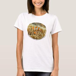 Clownfish Women's T Shirt