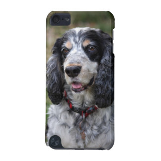 Cocker Spaniel dog , gift idea iPod Touch (5th Generation) Covers