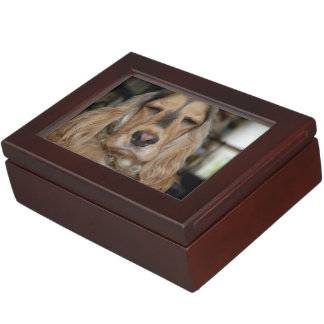 Cocker Spaniel Sushi Keepsake Box