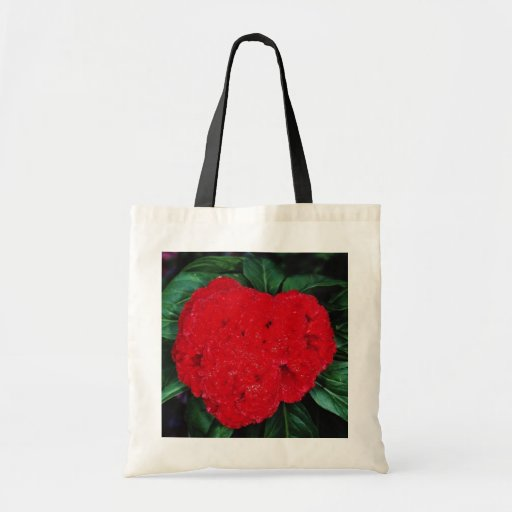 Cockscomb, East Indies flowers Canvas Bags