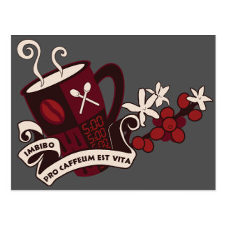 Coffee Bean Caffeine Latin Postcard