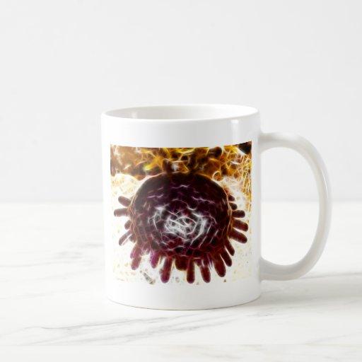 Colobocentrotus Atrata Sea Urchin Mugs