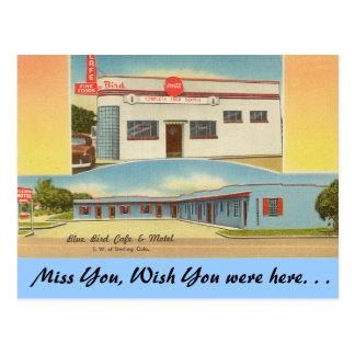 Colorado, Blue Bird Cafe & Motel Postcard