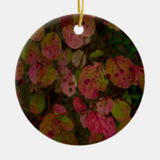 Colorful Autumn Christmas Ornament