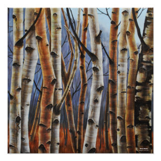 Colorful Birch Trees Poster