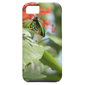 Colorful Butterfly Tough iPhone 5 Case
