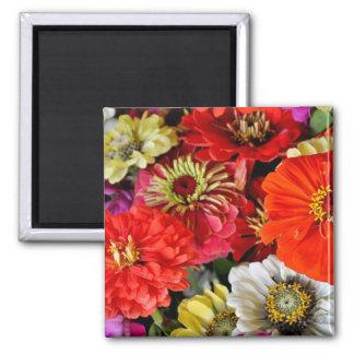 Colorful dahlia flowers magnet