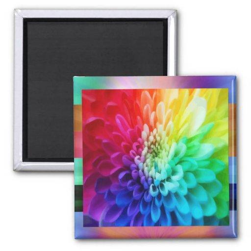 Colorful Flower Magnet