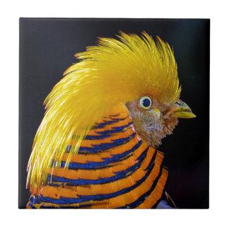 Colorful golden pheasant print tile