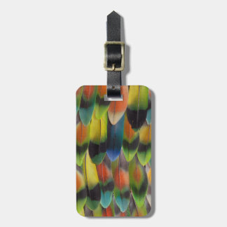 Colorful Lovebird Tail Feathers Luggage Tag