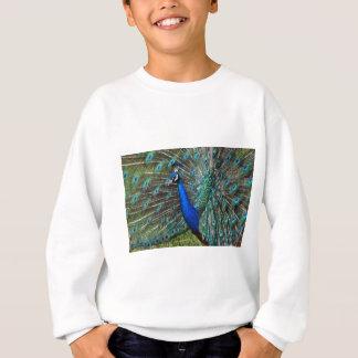 Colorful male peacock sweatshirt