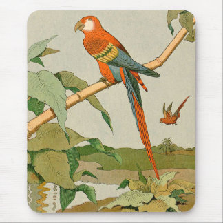 Colorful Orange and Brown Parrot on Bamboo Mouse Pad