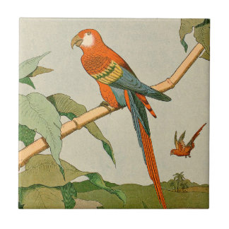 Colorful Orange and Brown Parrot on Bamboo Small Square Tile
