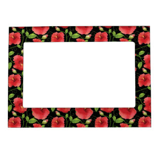 Colorful Red Hibiscus Blooms on Black Picture Frame Magnets