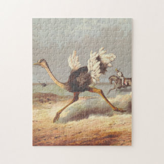 Colorful running ostrich illustration puzzle