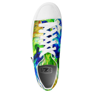 colorful shoes printed shoes