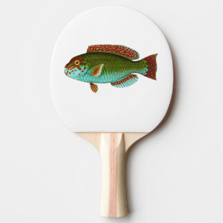 Colorful Vintage Fish Ping Pong Paddle