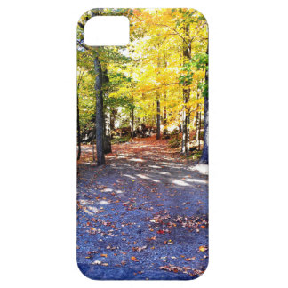 Coloured Autumn Path Case