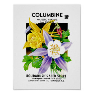 Columbine Seed Packet Label Poster