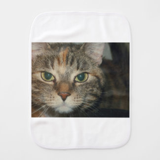 """""""Come if you dare"""" says the Cat Burp Cloth"""