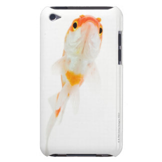 Comet / Comet-tailed goldfish iPod Case-Mate Case