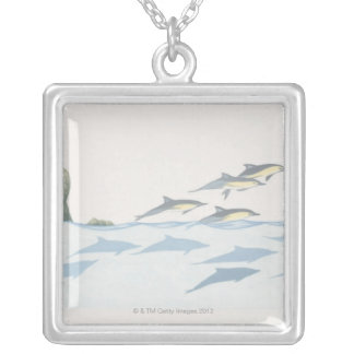 Common Dolphins Silver Plated Necklace