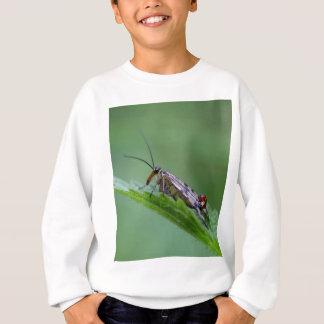 Common Scorpion Fly (Panorpa communis) Sweatshirt