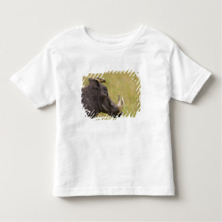 Common Warthog Phacochoerus africanus) with Toddler T-Shirt