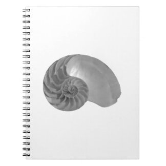 Complexity Simplicity Nautilus Shell Notebooks