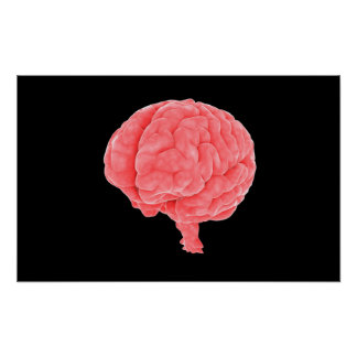 Conceptual Image Of Human Brain 5 Posters