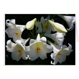 Condolences Card with Lilies