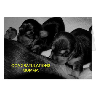 CONGRATULATIONS MOMMA! GREETING CARD