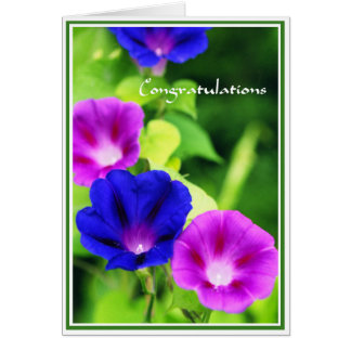 Congratulations - Morning Glories Greeting Card