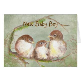 Congratulations New Baby Boy Cute Bird Family Greeting Card