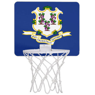 Connecticut flag mini basketball hoop