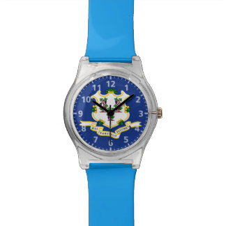Connecticut State Flag Watch