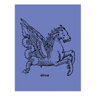 Constellaion: Pegasus Postcard