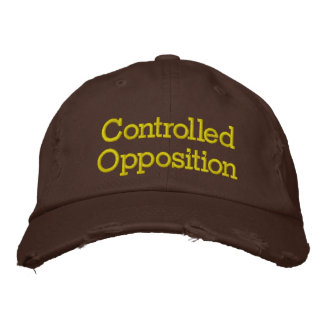Controlled Opposition Embroidered Hat