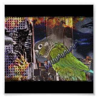 Conure chaos poster