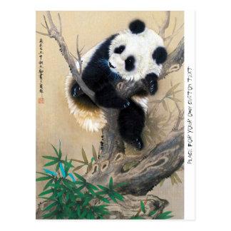 Cool chinese cute sweet fluffy panda bear tree art postcard