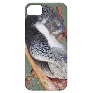 Cool Koala iPhone 5 Cover