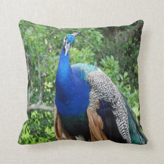 cool peafowl cushion
